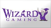 software-wizard-gaming